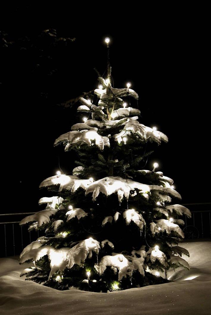 feiertage in cuxhaven weihnachten silvester duhnen. Black Bedroom Furniture Sets. Home Design Ideas